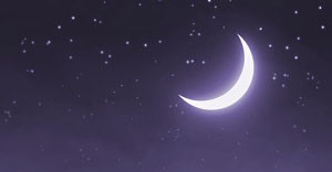 Ihr persönliches Mondtagebuch-image