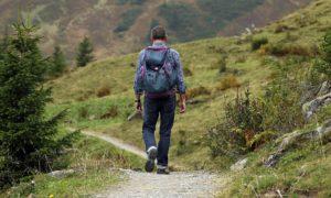 Wege, wandern